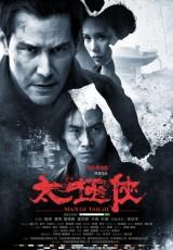 El poder del Tai Chi online (2013) Español latino descargar pelicula completa