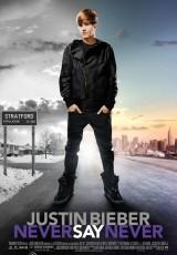 Justin Bieber: Never Say Never online (2011) Español latino descargar pelicula completa