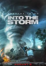 Into the storm online (2014) Español latino descargar pelicula completa