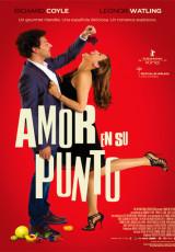 Amor en su punto online (2013) Español latino pelicula completa
