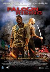 Falcon Rising online (2014) gratis Español latino pelicula completa