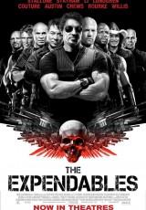 Los mercenarios online (2010) Español latino descargar pelicula completa