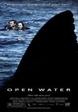 Open Water online (2003) Español latino descargar pelicula completa