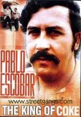 Pablo Escobar El terror de Colombia online gratis Español latino pelicula completa