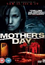 Mother's Day online (2010) Español latino descargar pelicula completa