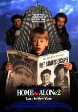 Solo en casa 2: perdido en Nueva York online (1992) Español latino descargar pelicula completa