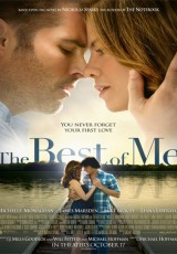 The Best of Me online (2014) Español latino descargar pelicula completa