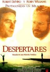 Despertares online (1990) Español latino descargar pelicula completa