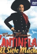 Cantinflas El siete machos online (1951) Español latino descargar pelicula completa