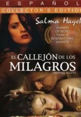 El Callejón de los Milagros online (1994) Español latino descargar pelicula completa