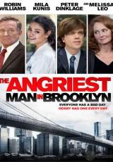 El hombre más enfadado de Brooklyn online (2014) Español latino descargar pelicula completa