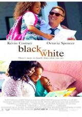 Black or White online (2014) Español latino descargar pelicula completa