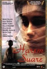 El Último harén online (1999) Español latino descargar pelicula completa