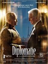 Diplomacia online (2014) Español latino descargar pelicula completa