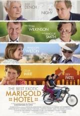 El exótico Hotel Marigold online (2011) Español latino descargar pelicula completa