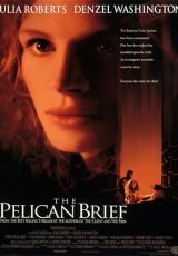 El informe Pelícano online (1993) Español latino descargar pelicula completa