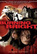 Atrapada (Burning Bright) online (2010) Español latino descargar pelicula completa