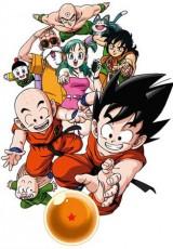 Dragon Ball Z ¡Reuniros! El mundo de Goku online (1992) Español latino descargar pelicula completa