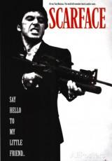 Scarface el precio del poder online (1983) Español latino descargar pelicula completa
