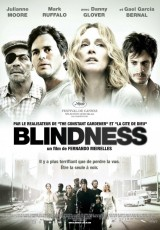 Blindness online (2008) Español latino descargar pelicula completa