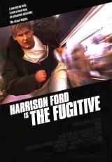 El fugitivo online (1993) Español latino descargar pelicula completa