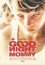 Goodnight Mommy online (2014) Español latino descargar pelicula completa