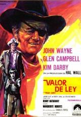 Valor de ley online (1969) Español latino descargar pelicula completa