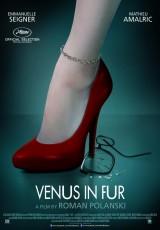 La venus de las pieles online (2013) Español latino descargar pelicula completa