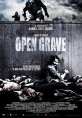 Open Grave online (2013) Español latino descargar pelicula completa