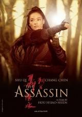The Assassin online (2015) Español latino descargar pelicula completa