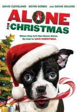 Alone for Christmas online (2015) Español latino descargar pelicula completa