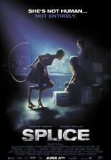 Splice online (2009) Español latino descargar pelicula completa