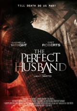 The Perfect Husband online (2015) Español latino descargar pelicula completa