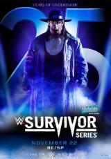 WWE Survivor Series online (2015) Español latino descargar pelicula completa