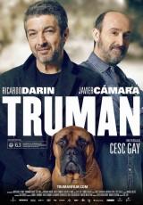 Truman online (2015) Español latino descargar pelicula completa