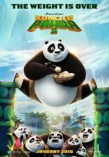 Kung Fu Panda 3 online (2016) Español latino descargar pelicula completa