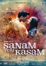 Sanam Teri Kasam online (2016) Español latino descargar pelicula completa
