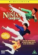 Tres pequeños ninjas 3 online (1995) Español latino descargar pelicula completa