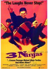 Tres pequeños ninjas online (1992) Español latino descargar pelicula completa