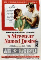Un tranvía llamado deseo online (1951) Español latino descargar pelicula completa