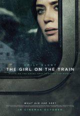 La chica del tren online (2016) Español latino descargar pelicula completa
