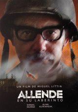 Allende en su laberinto online (2014) Español latino descargar pelicula completa