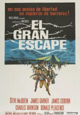 El gran escape online (1963) Español latino descargar pelicula completa