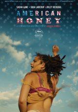 American Honey online (2016) Español latino descargar pelicula completa