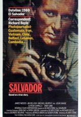 Salvador online (1986) Español latino descargar pelicula completa