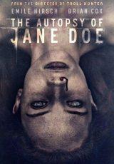 La autopsia de Jane Doe online (2016) Español latino descargar pelicula completa