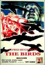 Los pájaros online (1963) Español latino descargar pelicula completa