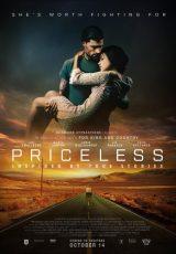 Priceless online (2016) Español latino descargar pelicula completa