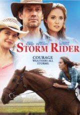 Storm Rider online (2013) Español latino descargar pelicula completa
