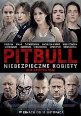 Pitbull Niebezpieczne kobiety online (2016) Español latino descargar pelicula completa